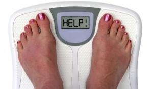 insecten-eten-verminderd-overgewicht