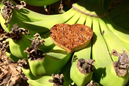 Bananenbrood met meelwormen