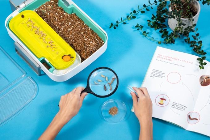 Hive explorer starters kit